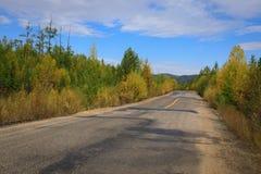 Trail through colorful autumn forest. Closeup of trail through colorful autumn forest Royalty Free Stock Photos
