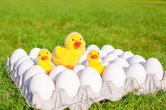 Closeup tray white eggs with the symbols of Easter Royalty Free Stock Photos