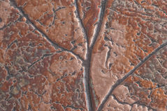 Closeup of treated copper Stock Photos