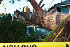 Closeup of tree crashed into home Royalty Free Stock Photography