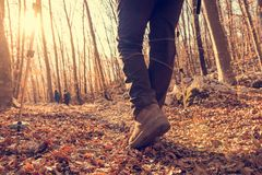 Closeup of trekking shoes. Person walking in autumn forest stock photo