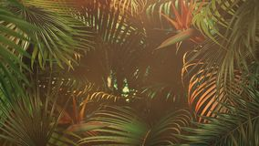 Closeup tropical leaf of trees, summer background