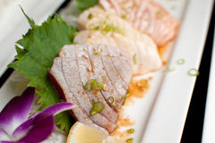 Closeup tuna and other fish sashimi Royalty Free Stock Image