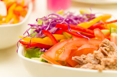 Closeup tuna salad with fresh purple cole, tomato and capsicum slices in white bowl.  Royalty Free Stock Photography