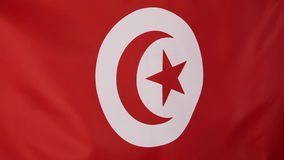 Closeup of Tunisian flag. In the wind stock video footage