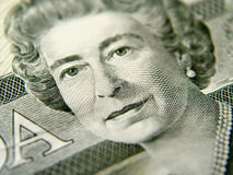 Closeup of Twenty Dollar Bill Stock Image