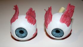 Closeup of two artificial eyeballs. Closeup of two  artificial eyeballs Stock Photos