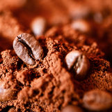 Closeup of two coffee beans at roasted coffee heap macro shot Royalty Free Stock Image