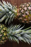 Closeup of two fresh ripe pineapples on a dark wood surface. Stock Photo