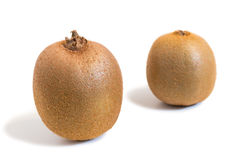 Closeup of two kiwifruits isolated on white background. Closeup of two kiwifruits (also known as kiwi or Chinese gooseberry) isolated on white background. The Royalty Free Stock Image