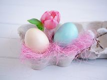Closeup of two pastel colored easter eggs in an egg carton stock photos