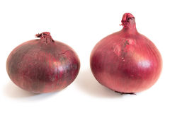Closeup of two whole red onions Royalty Free Stock Image