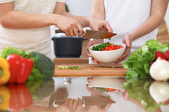 Closeup of two women are cooking in a kitchen. Friends having fun while preparing fresh salad Stock Image