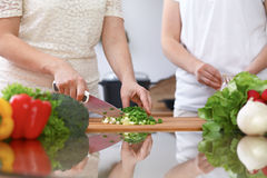 Closeup of two women are cooking in a kitchen. Friends having fun while preparing fresh salad Royalty Free Stock Photography