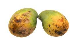 Closeup two yellow mango isolated on white background Stock Photos