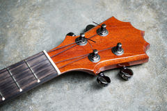 Closeup of ukulele headstock. And tuner Royalty Free Stock Images