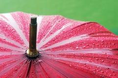 Closeup of umbrella with rain drops Stock Images