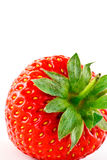 Closeup of a strawberry Royalty Free Stock Photo