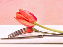 Closeup of utensils and red tulip Stock Photography