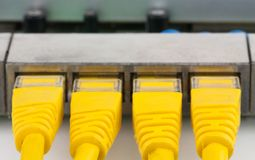 Closeup UTP RJ-45 connectors into routers ports. Closeup UTP RJ-45 yellow connectors into routers ports on the white background royalty free stock photography