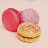 Closeup of varieties of macarons Stock Photography