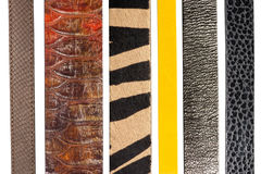 Closeup of various leather belts Stock Photography