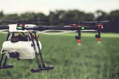 Closeup view of agriculture drone spraying water fertilizer on the green field Royalty Free Stock Images