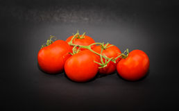 Closeup view of appetizing juicy vine red tomatoes on dark grey Royalty Free Stock Photography