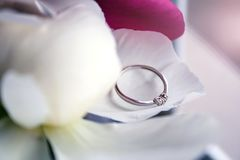 Beautiful engagement ring lying on the petal of white peony. Beautiful white gold engagement ring with three small diamonds in the shape of a heart lying on the stock photo