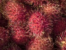 Red Lychee Fruit Royalty Free Stock Photography