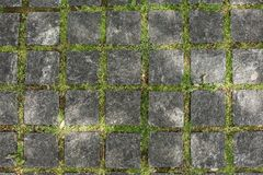 Closeup view on a cobblestone road with green grass background. Horizontal stock image