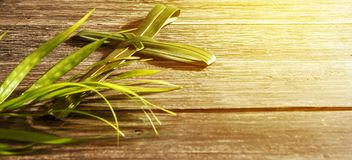 Palm Sunday concept stock images