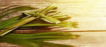 Palm Sunday concept. Closeup view of cross shape of palm leaf and palm branches with ray in wooden background. Palm Sunday concept stock images