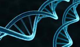 Closeup view on DNA molecule. 3D rendered illustration.  Royalty Free Stock Photo