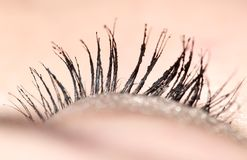 Closeup view of eye lashes. Photo in the studio Royalty Free Stock Photos