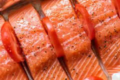 Closeup view fresh raw salmon fillets with herbs and spices on baking tray ready to be cooked in oven.  Stock Photos