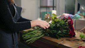 Closeup view of hands of female florist arranging modern bouquet using beautiful red roses at flower shop. Slowmotion. Shot stock video footage