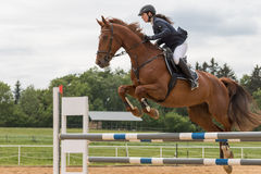 Closeup view of high jump over the horse hurdle Royalty Free Stock Photos