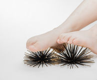 Closeup view of human feet doing massage therapy on artificial sea urchins model Stock Photos