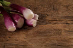 Closeup view of onions Stock Photography