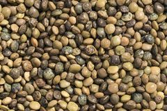 Texture of some lentils. Closeup view and pattern of some Lentils Royalty Free Stock Image
