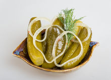 Closeup view of pickled cucmbers in a bowl Royalty Free Stock Photo