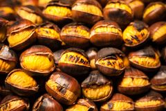 A closeup view of some roasted chestnuts in Navona Square, Christmas, Rome, Italy stock photo