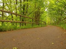A closeup view to run road in park. The asphalt wa Royalty Free Stock Photography