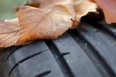 View on tread of high performance car tire with autumn leaves on profile - car tuning and maintenance concept. Closeup view on tread of high performance car tire stock images