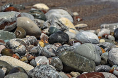 Closeup view of wet beach pebble Stock Photo