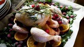 Closeup view of Whole Raw Chicken with Fresh parsley Cranberries and Orange Slices on baking tray tin prepared for Stock Photography