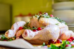 Closeup view of Whole Raw Chicken with Fresh parsley Cranberries and Orange Slices on baking tray tin prepared for roasting in ove Stock Photo