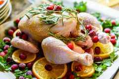 Closeup view of Whole Raw Chicken with Fresh parsley Cranberries and Orange Slices on baking tray tin prepared for roasting in ove Stock Images