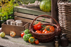 Vintage basement with harvested vegetables and fruits royalty free stock images